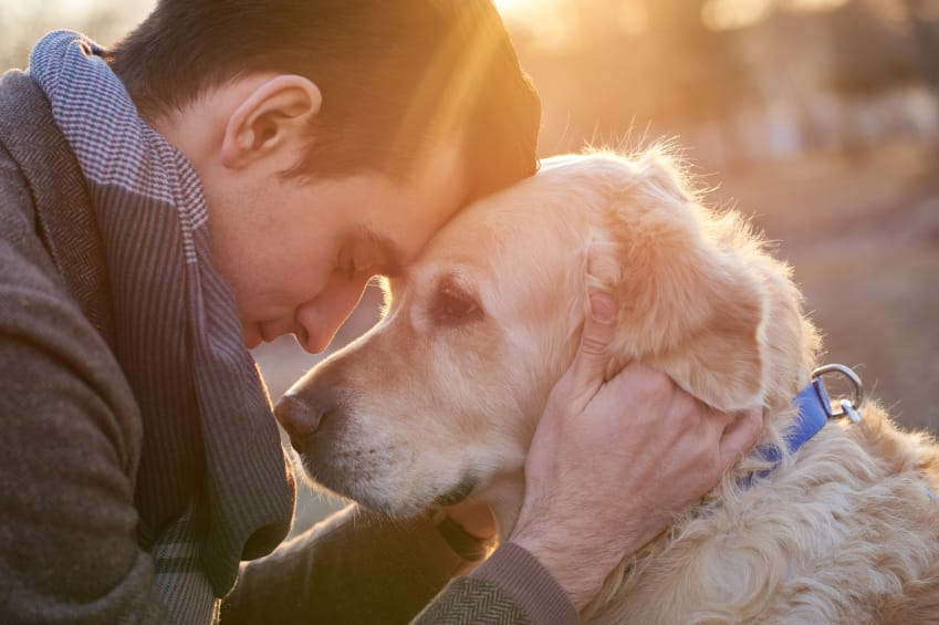 Benefits of Owning a Dog   Lakehouse Recovery Center